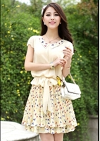 Summer Doll Collar Thin Chiffon Dress